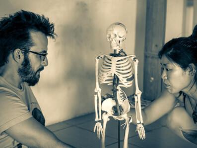 Looking at skeleton